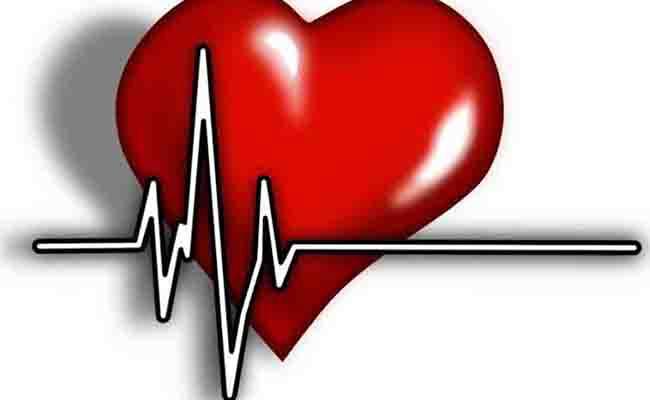 Men & Women May Develop Heart Disease Differently