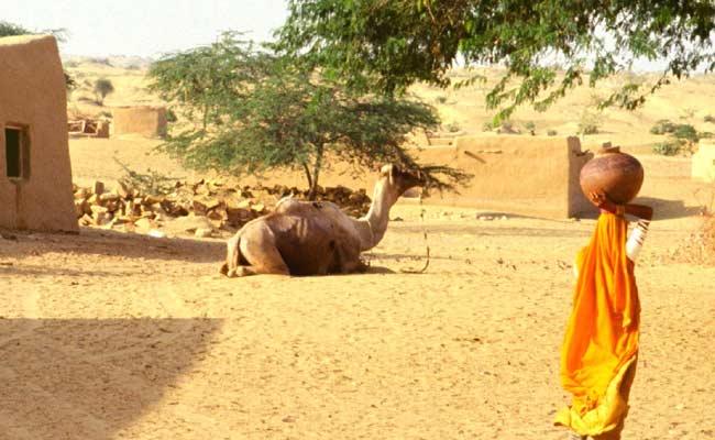 Heatwave Intensifies, Churu In Rajasthan Sizzles At 50-Degree Celsius