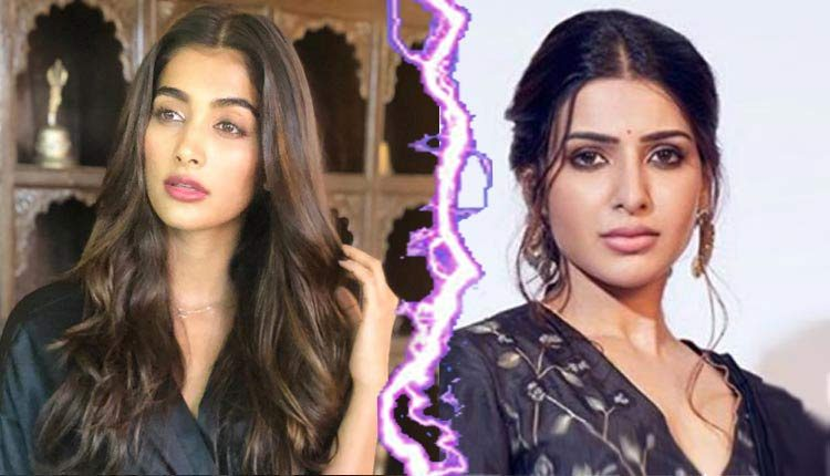 Pooja Hegde And Samantha Akkineni Fight: 'Stupid' Statement Of Naga Chaitanya's Wife Now Takes This Further