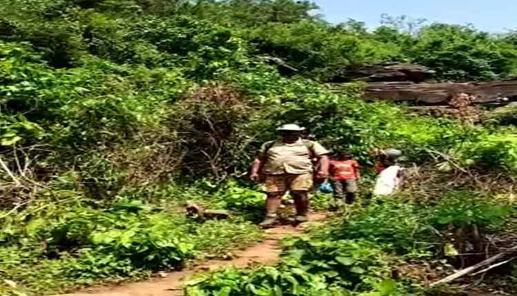 Odisha Tribal family takes refuge in cave in jharkhand