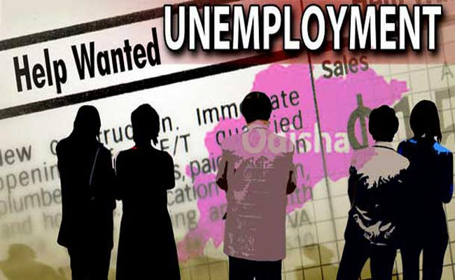 unemployment Odisha