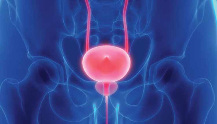 Breakthrough Discovery Can Transform Prostate Cancer Treatment
