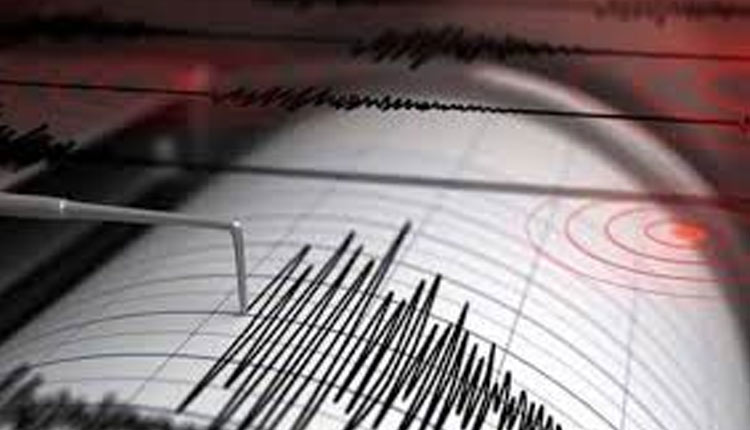 No Need For Panic Over Delhi Tremors: NCS Director