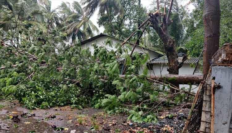 Cyclone Nisarga makes landfall