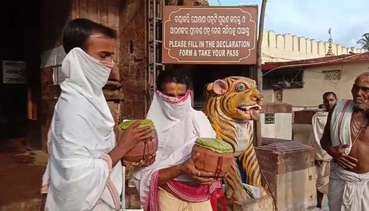 Rath Yatra Anasara Rituals- Convalescing Deities Receive 'Phuluri Tela' Treatment