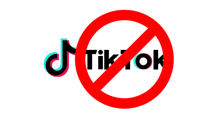 TikTok Issues First Response After Ban, Calls It 'Interim Order'