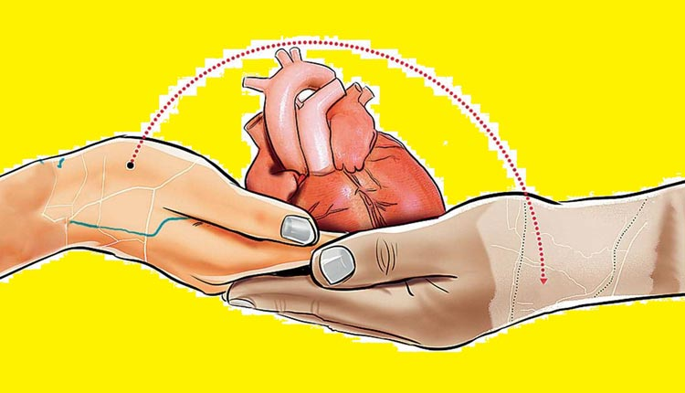 Heart Transplants Declined Sharply During COVID-19 Pandemic