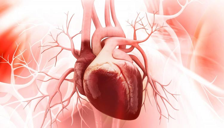 Minor Heart Defects Linked To Long-Term Problems In Adulthood