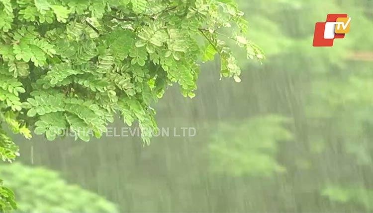 Several Parts Of Odisha Record Rain As Monsoon Remains Active