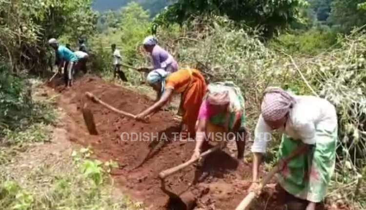 Opportunity Amidst Crisis: Migrant Helps Co-Villagers Create 1 KM-Long Canal In Odisha