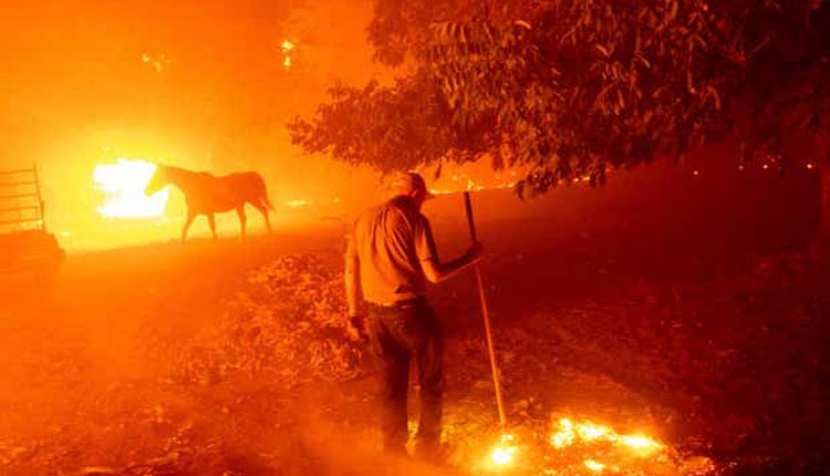 California Wildfires: Donald Trump Declares Havoc As Major Disaster