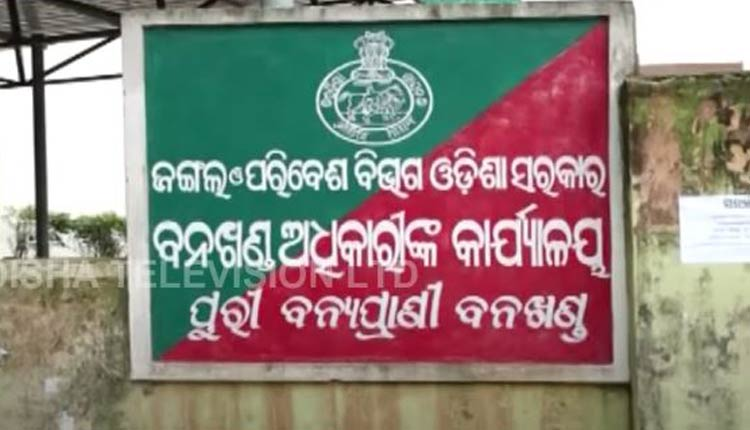 Puri Assistant Conservator of Forest Arrested In Corruption Case