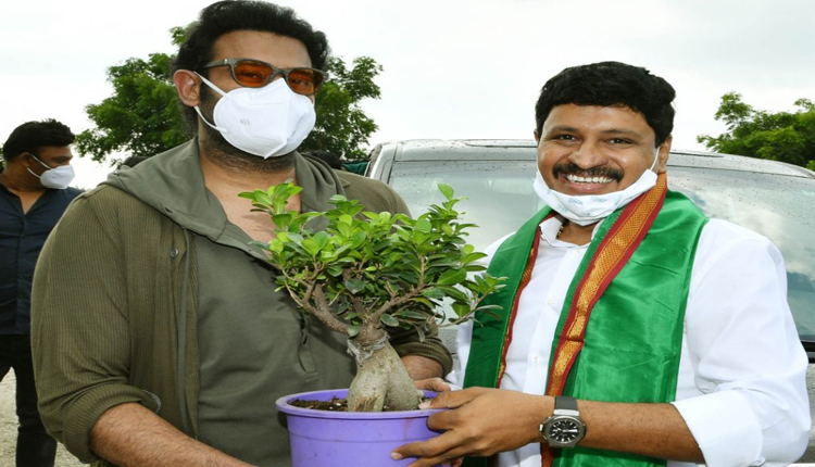 Prabhas Adopted a Forest