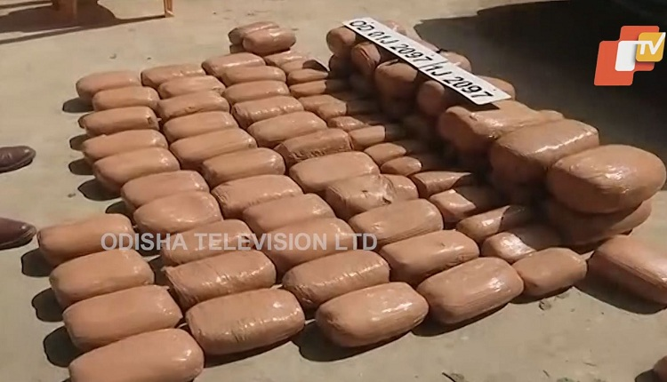 Bhubaneswar: Huge Quantity Of Ganja Loaded In Bolero Seized, 1 Held