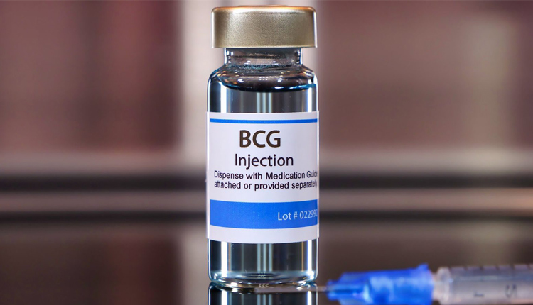 BCG Vaccine May Help Elderly Fight Against Covid-19: ICMR
