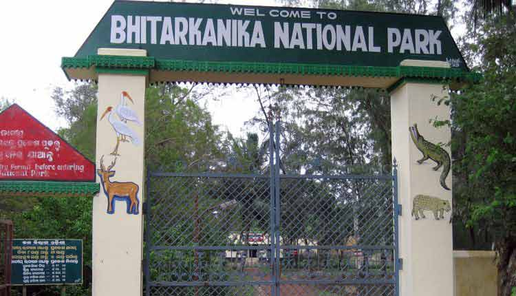 Bhitarkanika To Reopen For Visitors On October 19; COVID19 SOP Issued