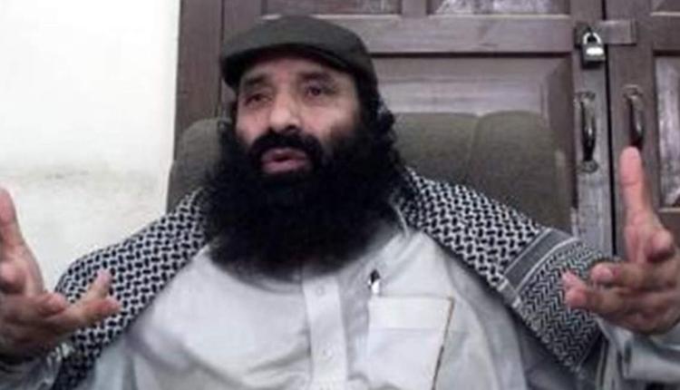 Govt Declares Hizbul Chief Salahuddin Among 18 As Terrorist Under UAPA