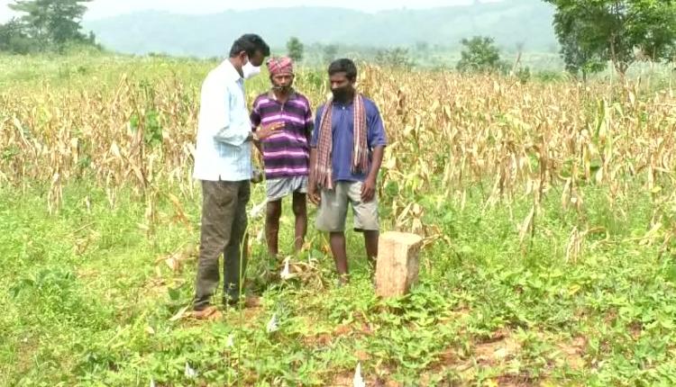 Andhra Pradesh's Encroachment