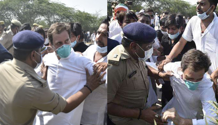 High Drama In Hathras: Rahul Gandhi Pushed On Ground, Detained By UP Police