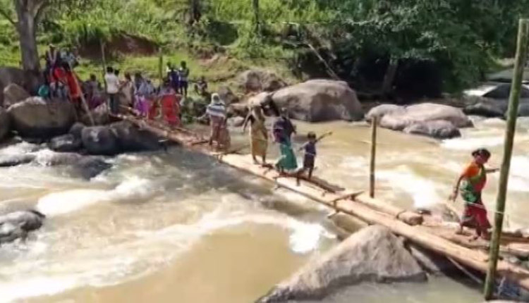 Govt Apathy! Villagers Build Bridge On Own In Odisha