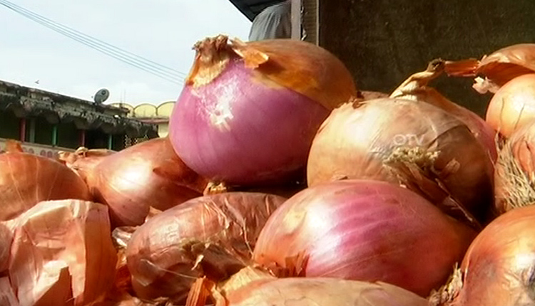 India Bans Exports Of Onion Seeds With Immediate Effect