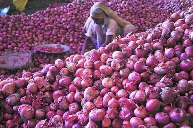 onion price rise