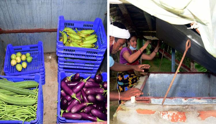 'Sabji Cooler' Brings Smiles To Odisha Farmers