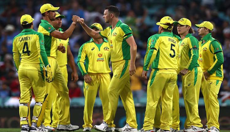 Australia Defeat India By 66 Runs, Take 1-0 Lead In ODI Series