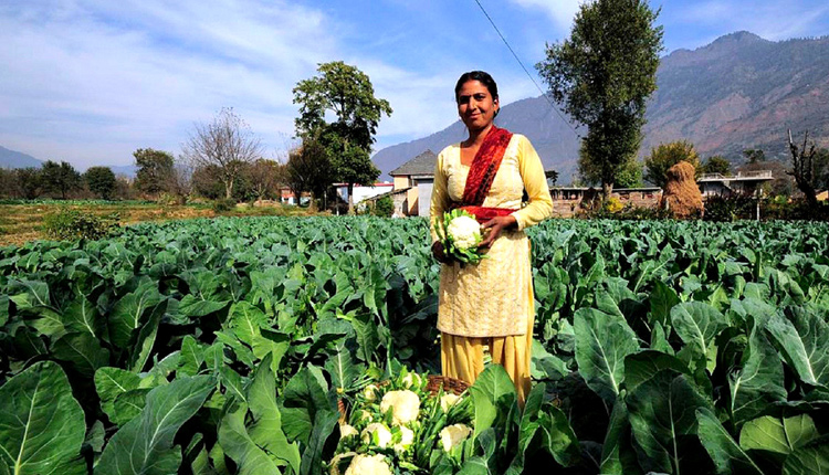 UP Banks On Organic Farming To Boost Farmer's Wealth