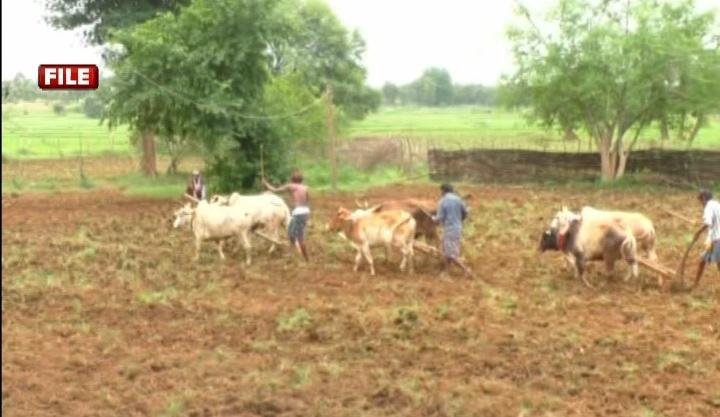 Farmer Issues