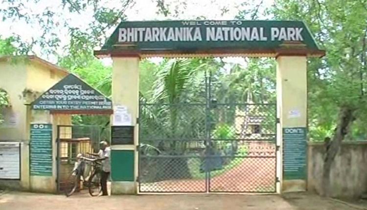 Bhitarkanika Registers Marginal Drop In Mammal Count, Still Remains Ideal Habitat, Says Official