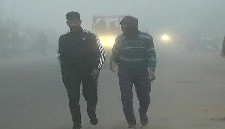 Dense Fog Alert: Odisha SRC Issues Advisory In View Of Yellow Warning