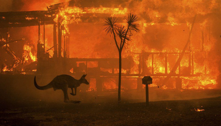 Australian Bushfires: More Frequent, Prolonged, Severe Courtesy Climate Change, Warn Experts