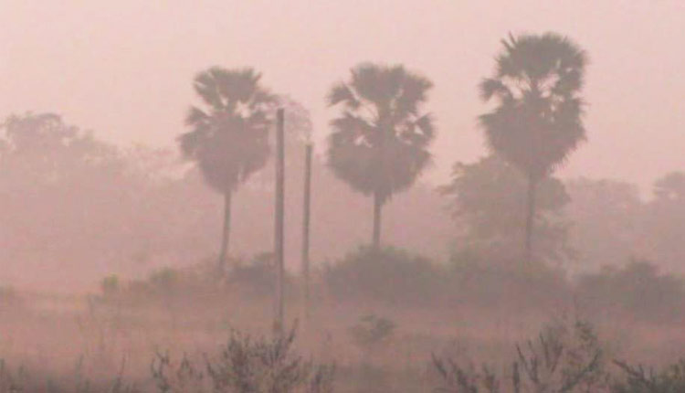 Titlagarh wakes up to a foggy morning on Tuesday