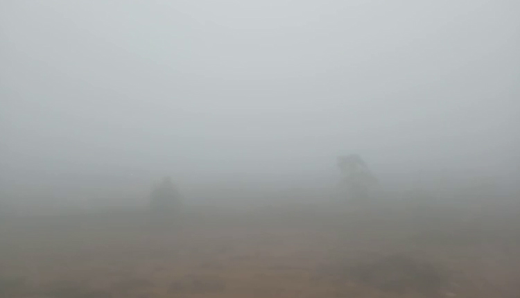 A thick blanket of fog engulfed several parts of Bhubaneswar