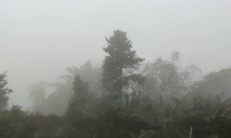 A thick blanket of fog covered several parts of Balasore