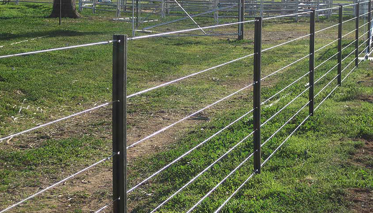 Odisha Govt Plans To Involve Communities For Solar Fencing In Elephant-Impacted Areas