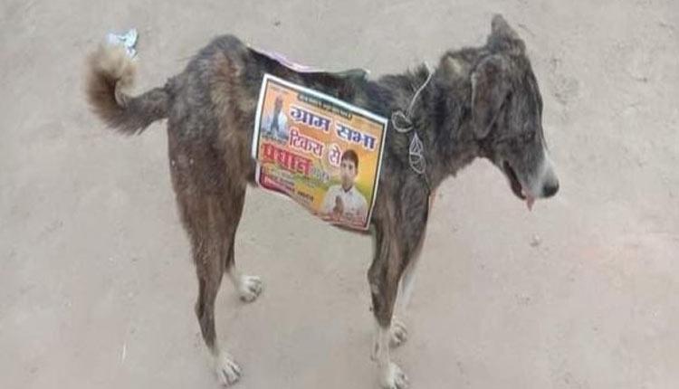UP-Panchayat-Polls